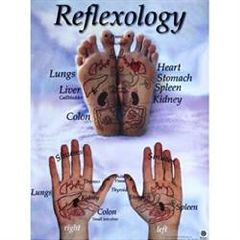 Real Bodywork Reflexology Hand And Foot Reflex Chart 18X24 Inch