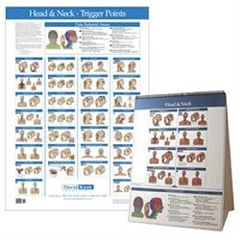 Kent Health Systems Kent Trigger Point Charts - Head & Neck