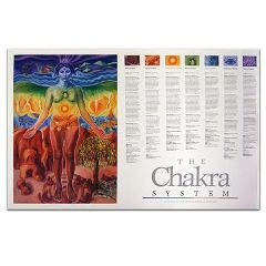 "Amina Re Chakra System Guide Chart 24"" X 36"""