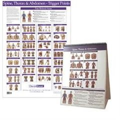 Kent Health Systems Kent Trigger Point Charts - Torso/Spine