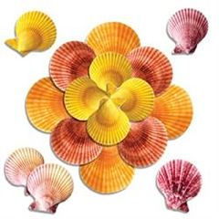 ScripHessco Sea Shells For Massage - Various Sizes