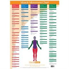 Kent Health Systems Kent Trigger Point Charts - Muscle Movements