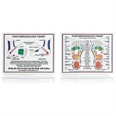 "Claire Marie Miller Seminars Laminated Foot Reflexology Chart 8.5"" X 11"""