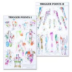 Lippincott Trigger Point Charts Set(I & II) Laminated