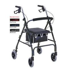 ProBasics Aluminum Rollator with 6-inch Wheels, Blue Flame