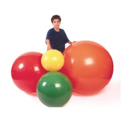 Physiogymnic Inflatable Exercise Ball