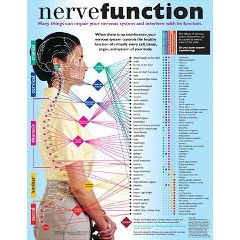 Back Talk Systems, Inc Nerve Function Handouts 50 Pack