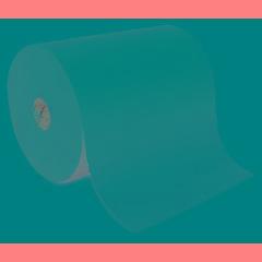 enMotion® Paper Towel Roll