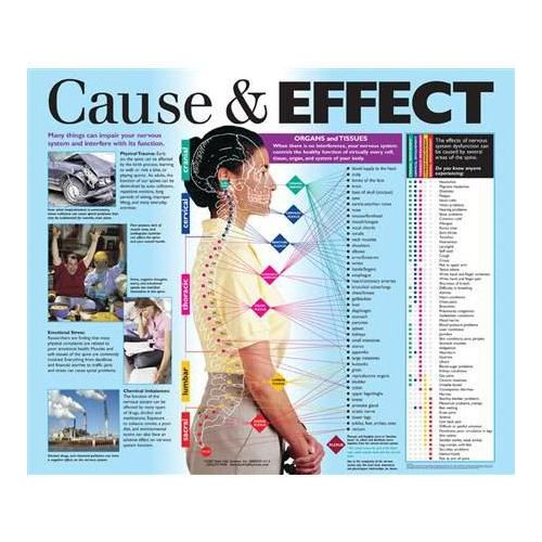 cause and effect of kaingin system The cause and effect of heart rate in relation to the nervous system can be varied when the heart rate is low, the nervous system is limited in terms of blood supply and this may cause seizures answered.