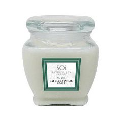 Spa Essentials SOi Candles - Natural Soy Candle & Skin Moisturizer