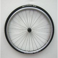 """New Solutions 25"""" 20-559 Spinergy 30 Steel Spoke Rear Wheels"""