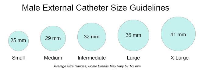 Male External Catheter Size Chart